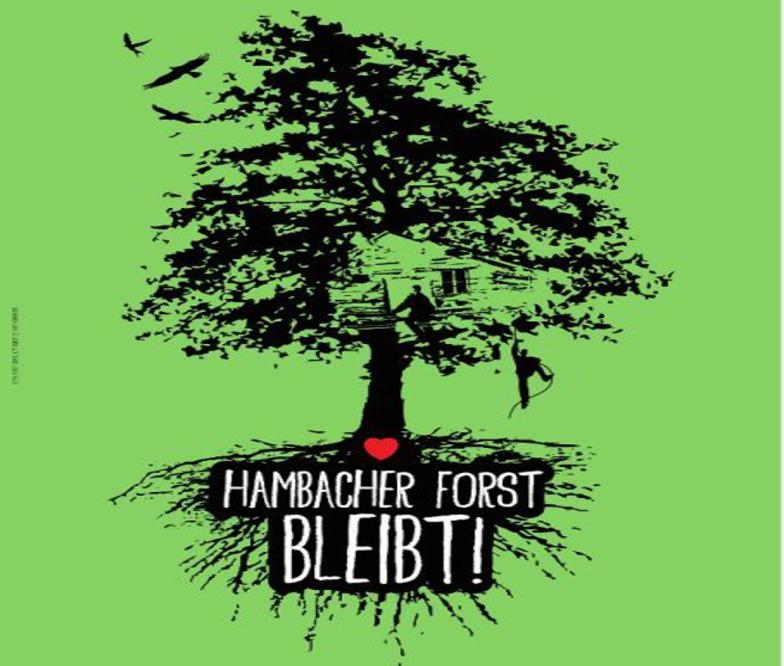 Tag X – seit drei Tagen Räumung im Hambacher Forst